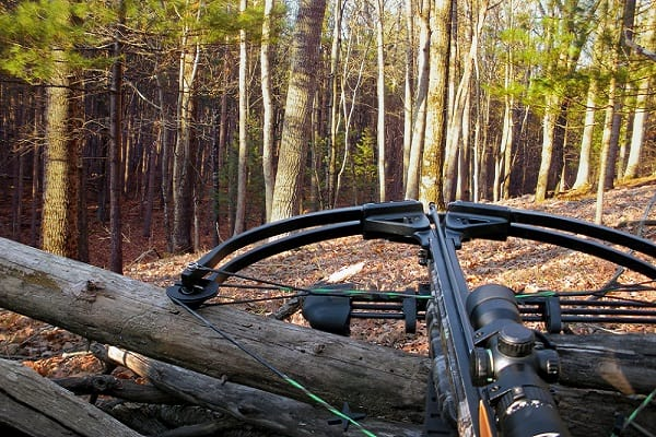 carry a crossbow in the woods